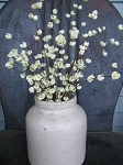 Primitive Cream Buttercup Floral Pick