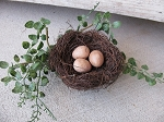 Primitive Angel Vine Bird Nest with Tan Eggs