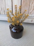 Primitive Country Rustic Fall Mustard Astilbe Bush