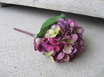 Primitive Purple Hydrangea Single Stem