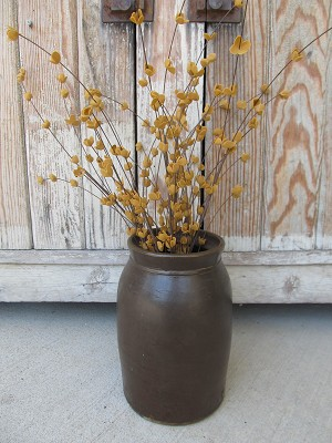 Primitive Country Rustic Tea Stained Buttercup Floral Pick